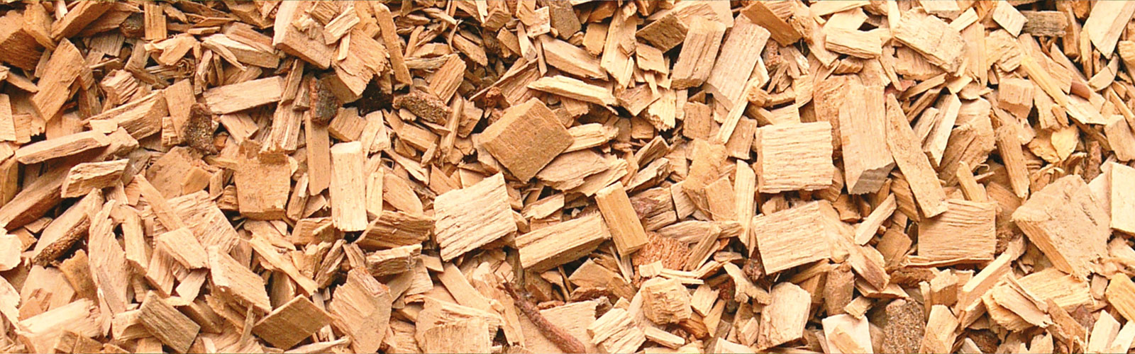 The Wood Chip Cycle /
